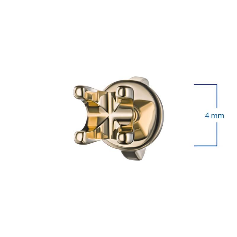 Золотая оправа (каст) э0300пс06200852 (фото 2)